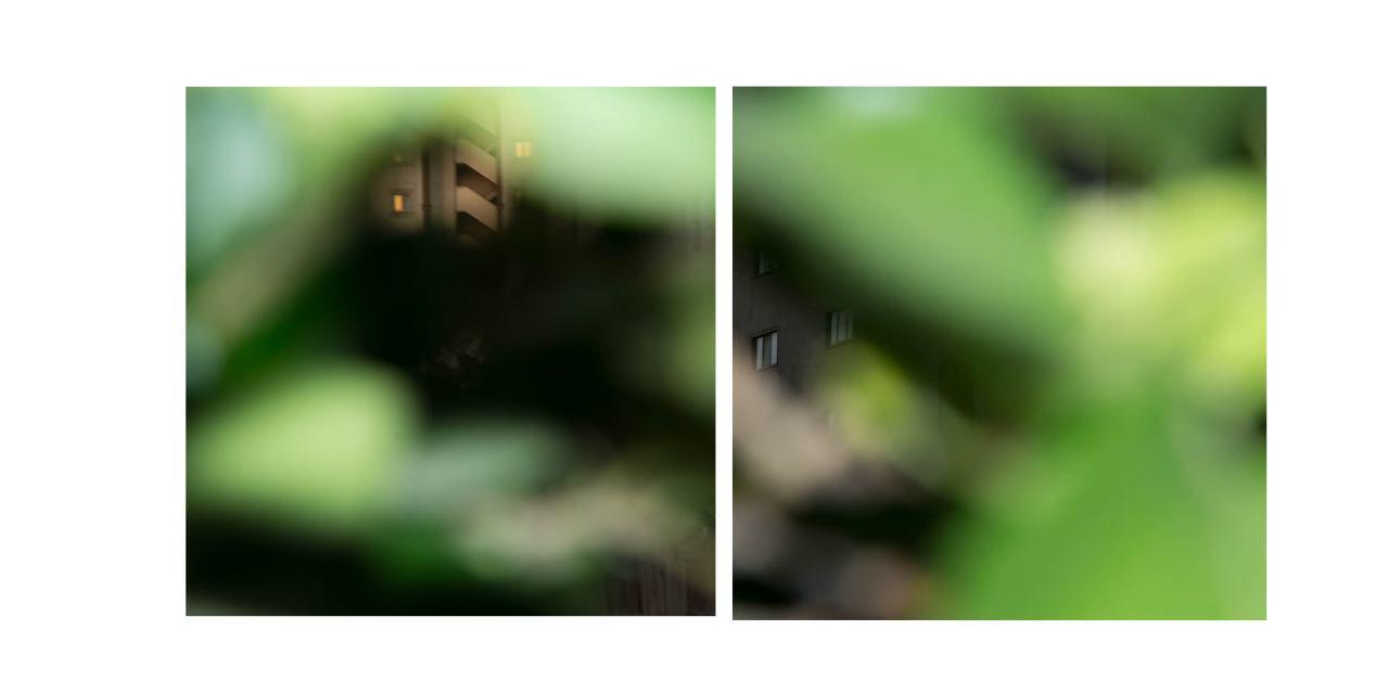 photo_2017-02-18_11-30-55