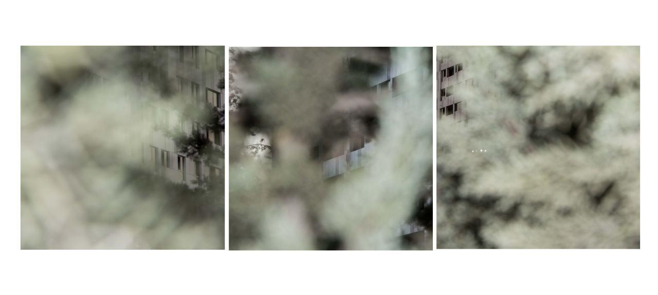 photo_2017-02-18_11-31-05