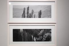 mehran-moghimi-iranshahr-gallery-33