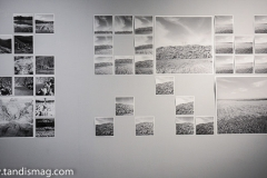 mehran-moghimi-iranshahr-gallery-21
